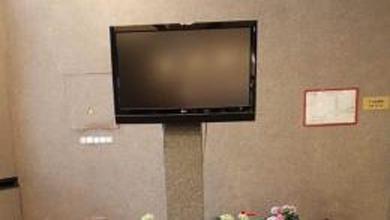 В петербургской райадминистрации нашли «могилу телевизора»